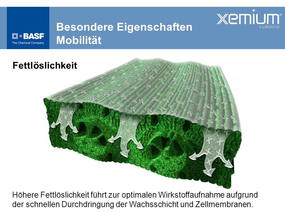 Neuer Standard Ertragssicherheit Schutz vor Halmknicken WG Loerbrockshof 2011 - Adexar ® -