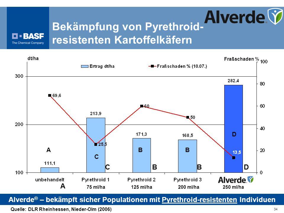 34 dt/ha A CBBD Fraßschaden % 75 ml/ha125 ml/ha200 ml/ha250 ml/ha Bekämpfung von Pyrethroid- resistenten Kartoffelkäfern Alverde ® – bekämpft sicher P