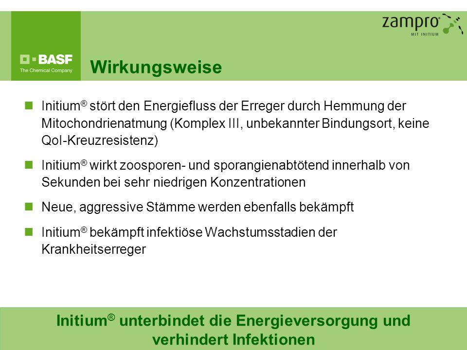 6 Wirkungsweise Initium ® unterbindet die Energieversorgung und verhindert Infektionen Initium ® stört den Energiefluss der Erreger durch Hemmung der
