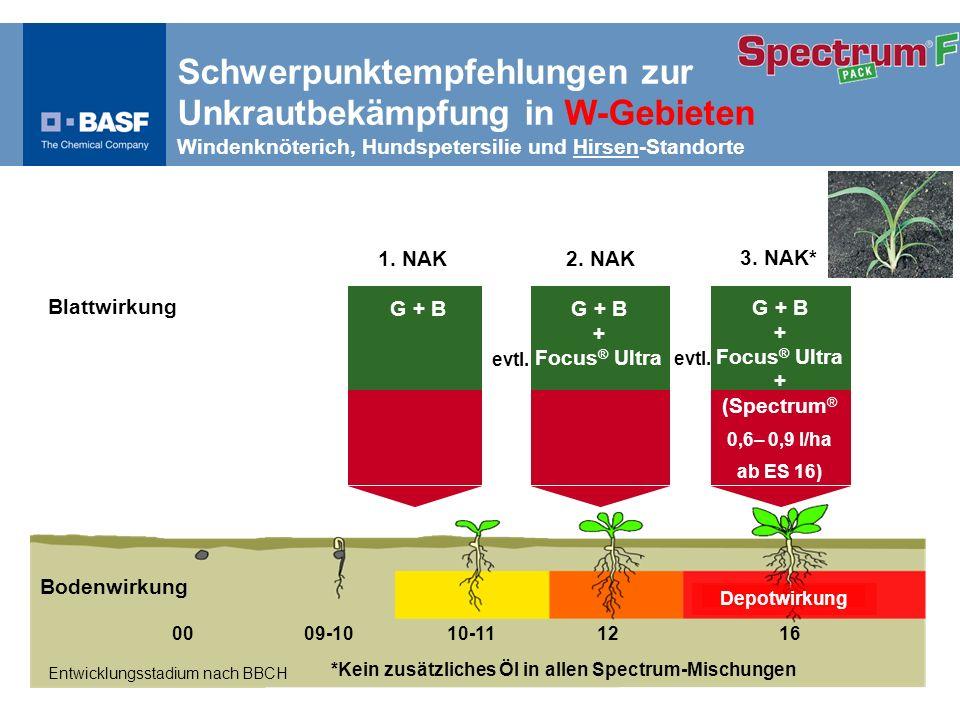 Schwerpunktempfehlung Hirse, Ausfallgetreide und Ungr ä ser Spectrum ® 0,3 l/ha Spectrum ® 0,6 l/ha Depotwirkung Entwicklungsstadium nach BBCH 00 09-10 10-11 12 16 2.