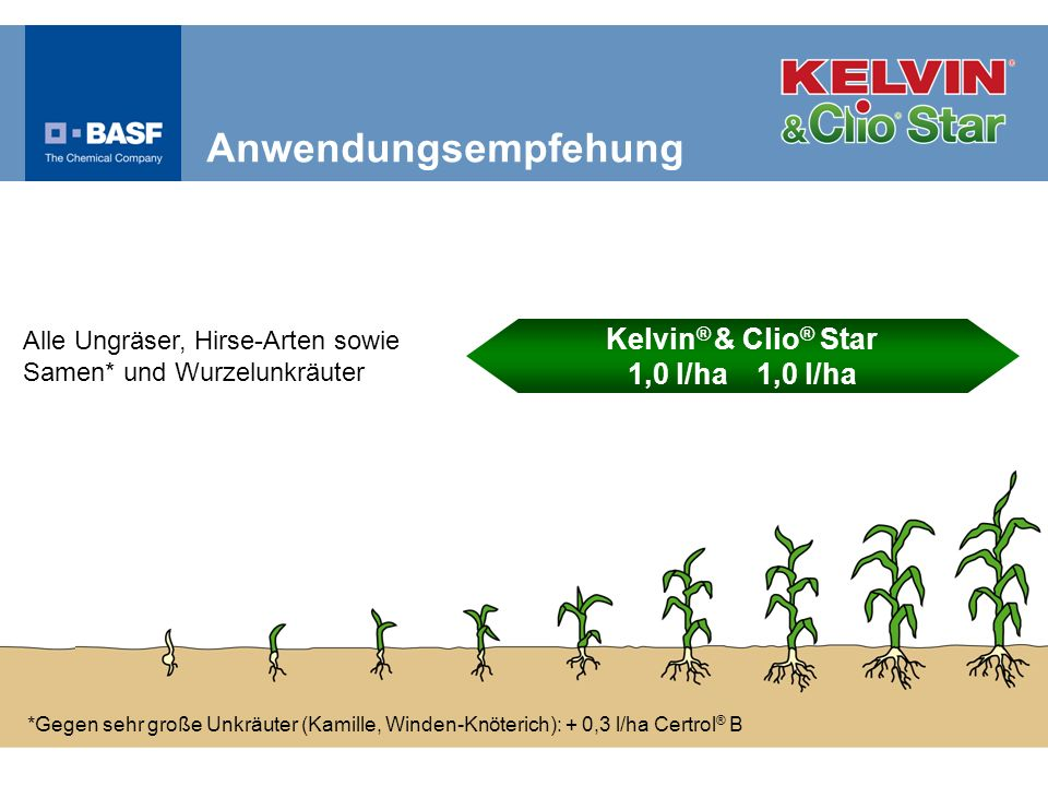 *Gegen sehr große Unkräuter (Kamille, Winden-Knöterich): + 0,3 l/ha Certrol ® B Alle Ungräser, Hirse-Arten sowie Samen* und Wurzelunkräuter Anwendungs