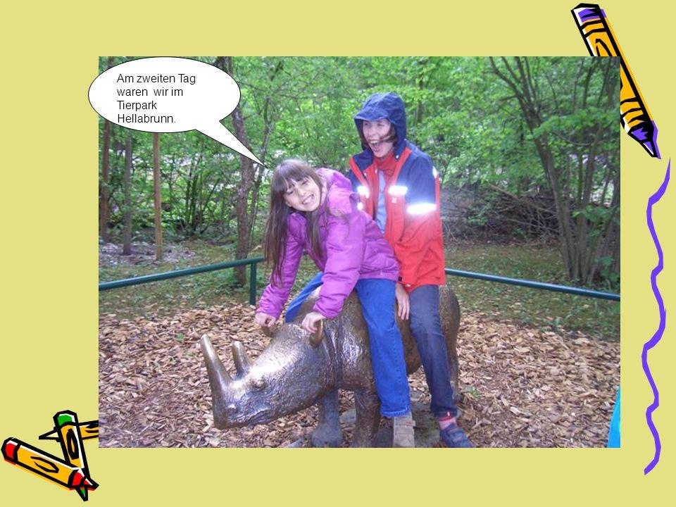 Am zweiten Tag waren wir im Tierpark Hellabrunn.