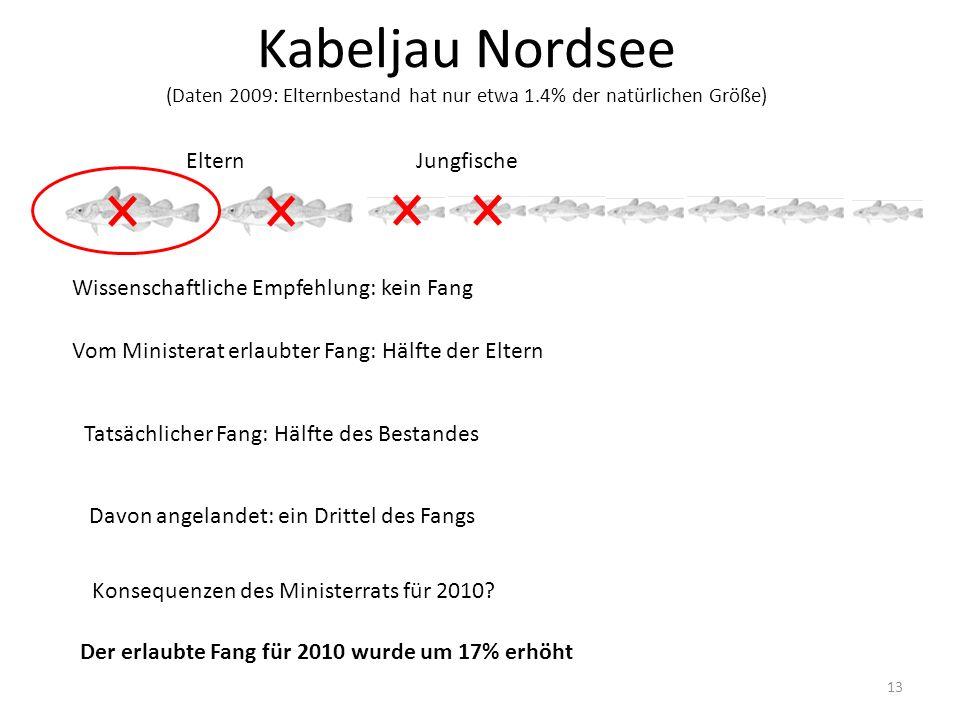 Kabeljau Nordsee (Daten 2009: Elternbestand hat nur etwa 1.4% der natürlichen Größe) 13 ElternJungfische Wissenschaftliche Empfehlung: kein Fang Vom M