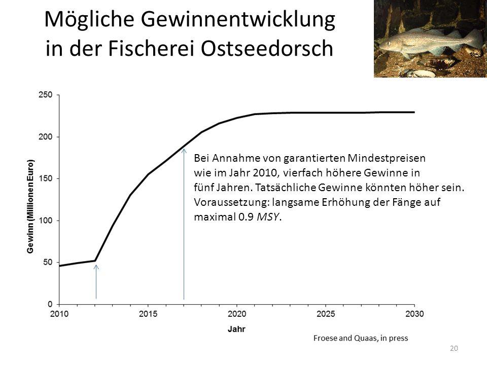 Mögliche Gewinnentwicklung in der Fischerei Ostseedorsch 20 Bei Annahme von garantierten Mindestpreisen wie im Jahr 2010, vierfach höhere Gewinne in f