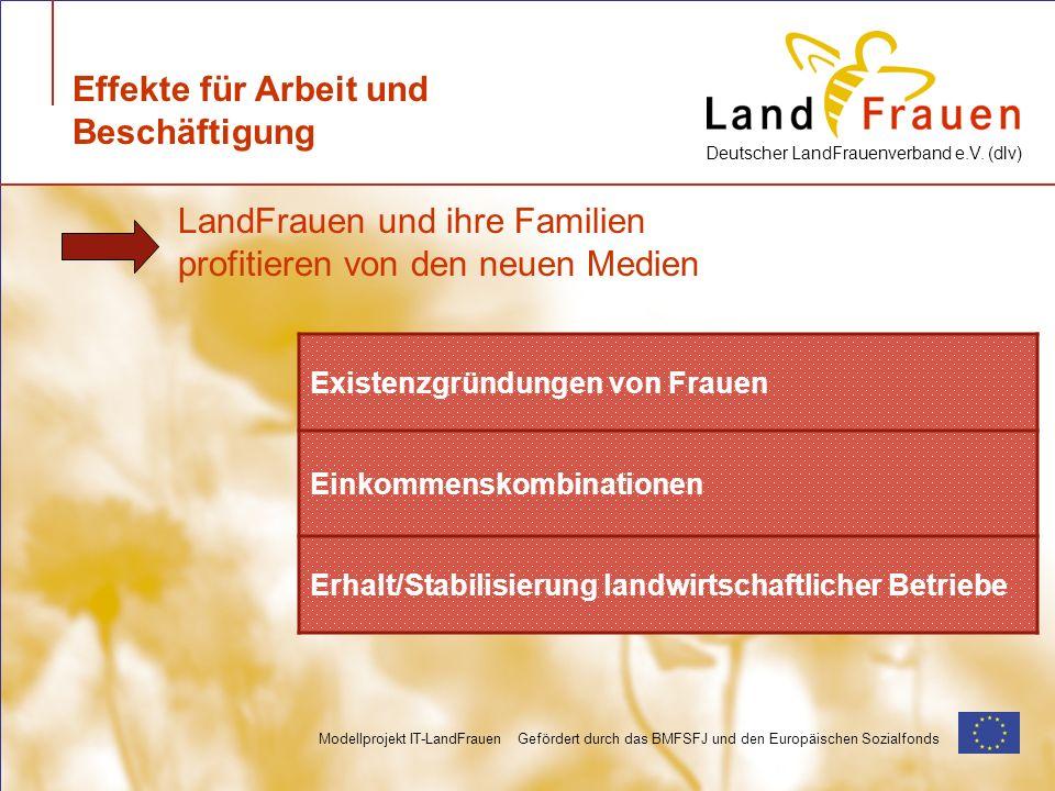 Deutscher LandFrauenverband e.V. (dlv) Modellprojekt IT-LandFrauen Gefördert durch das BMFSFJ und den Europäischen Sozialfonds Effekte für Arbeit und