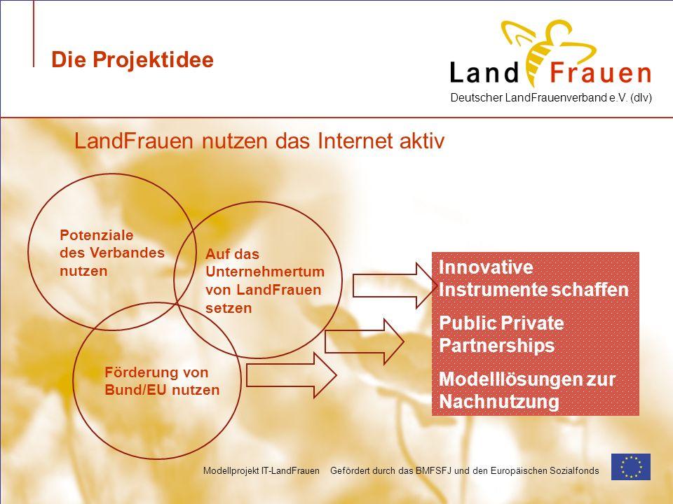 Deutscher LandFrauenverband e.V. (dlv) Modellprojekt IT-LandFrauen Gefördert durch das BMFSFJ und den Europäischen Sozialfonds Die Projektidee Potenzi