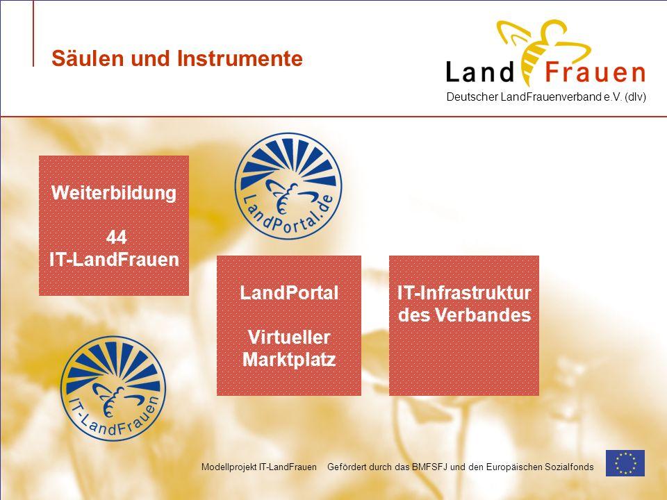 Deutscher LandFrauenverband e.V. (dlv) Modellprojekt IT-LandFrauen Gefördert durch das BMFSFJ und den Europäischen Sozialfonds Säulen und Instrumente