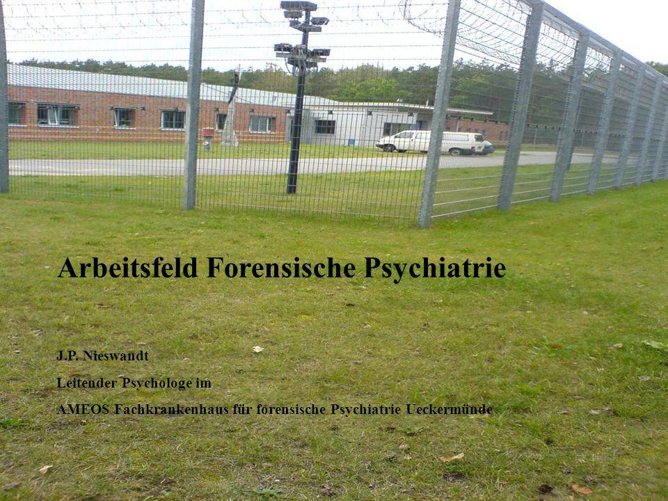 Arbeitsfeld Forensische Psychiatrie J.P.
