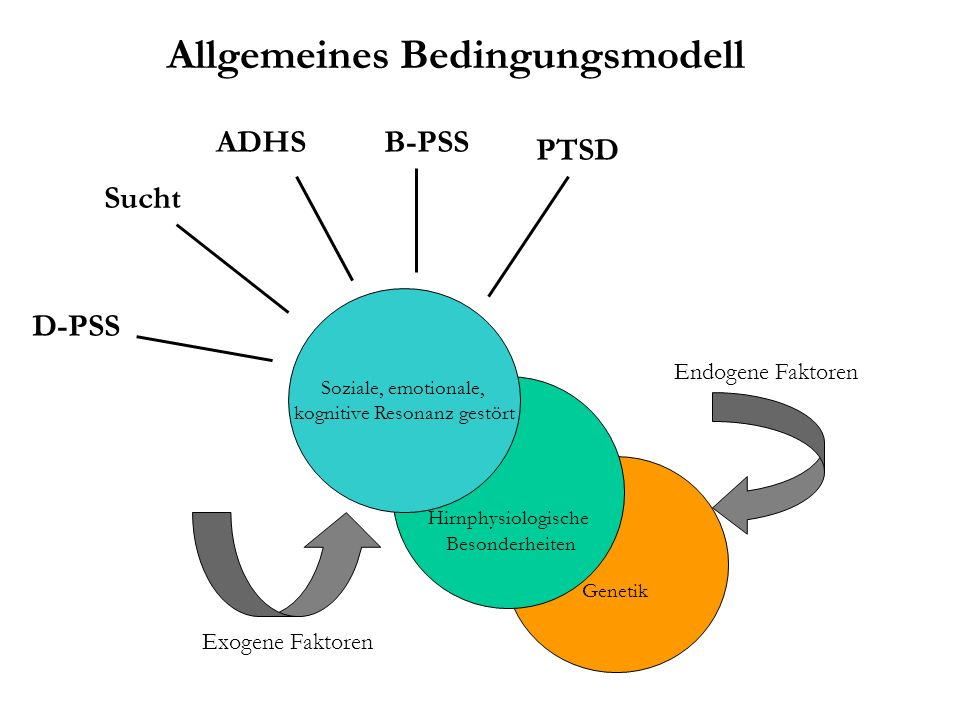 Genetik Hirnphysiologische Besonderheiten Soziale, emotionale, kognitive Resonanz gestört Exogene Faktoren Endogene Faktoren ADHSB-PSS Sucht D-PSS PTSD Allgemeines Bedingungsmodell