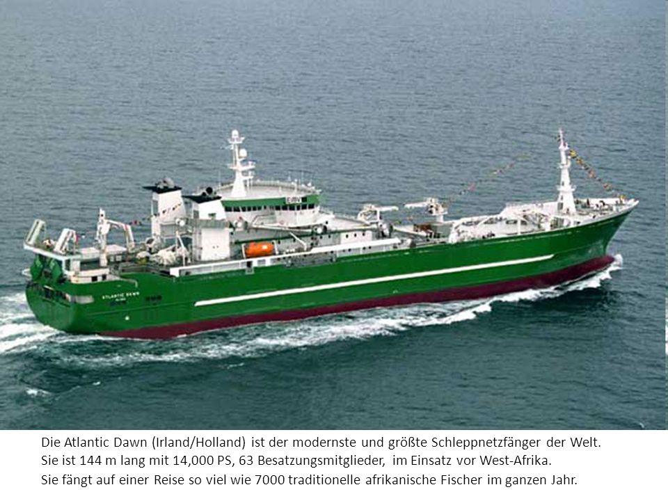 Die Atlantic Dawn (Irland/Holland) ist der modernste und größte Schleppnetzfänger der Welt. Sie ist 144 m lang mit 14,000 PS, 63 Besatzungsmitglieder,