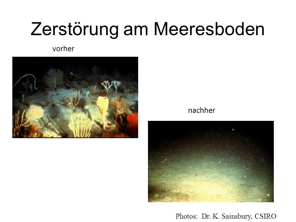Zerstörung am Meeresboden Photos: Dr. K. Sainsbury, CSIRO vorher nachher