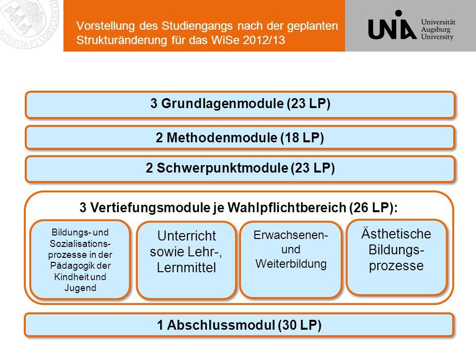 Vorstellung des Studiengangs nach der geplanten Strukturänderung für das WiSe 2012/13 3 Grundlagenmodule (23 LP) 2 Methodenmodule (18 LP) 2 Schwerpunk