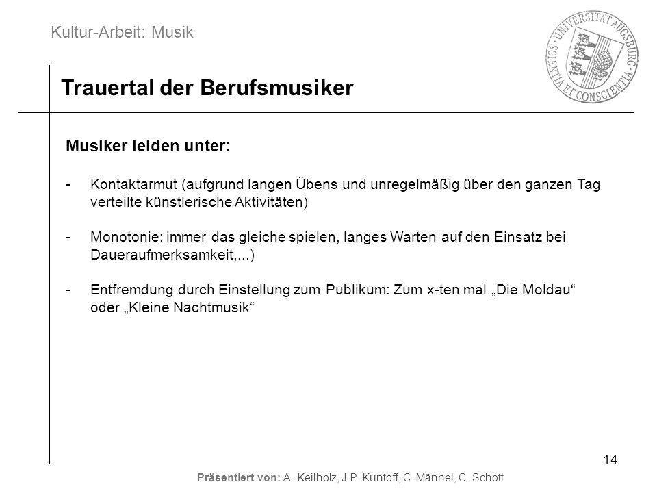 Kultur-Arbeit: Musik Präsentiert von: A. Keilholz, J.P. Kuntoff, C. Männel, C. Schott 14 Trauertal der Berufsmusiker Musiker leiden unter: -Kontaktarm