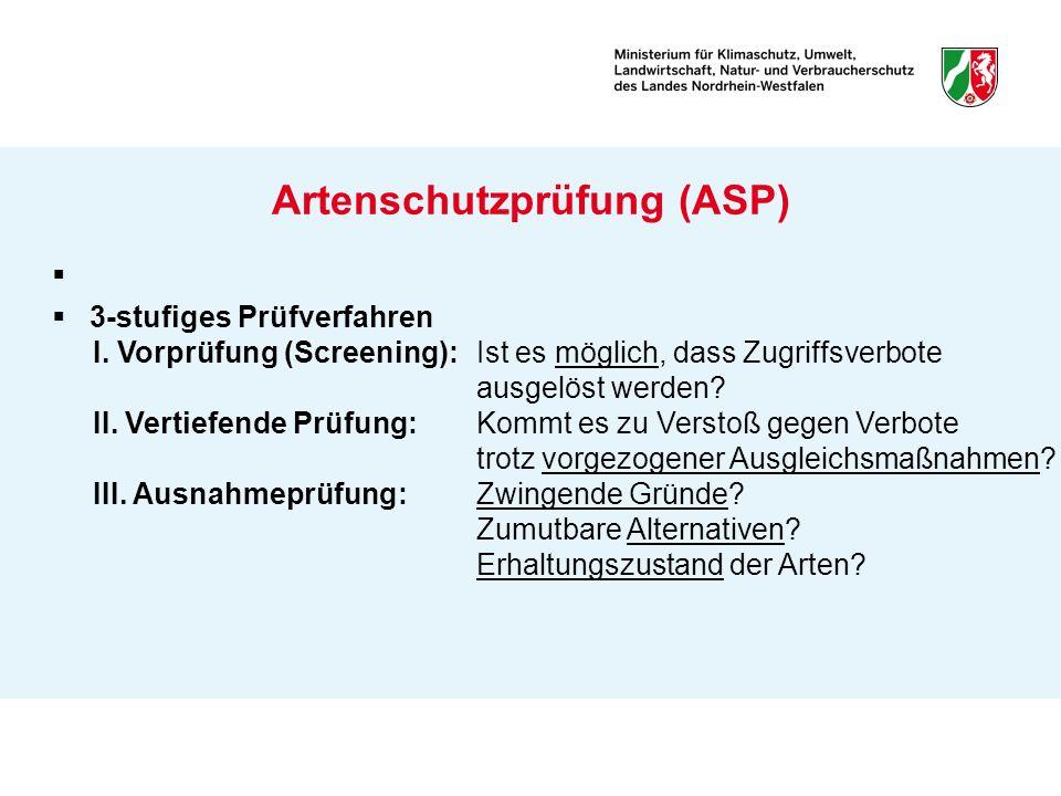 Artenschutzprüfung (ASP) 3-stufiges Prüfverfahren I. Vorprüfung (Screening): Ist es möglich, dass Zugriffsverbote ausgelöst werden? II. Vertiefende Pr