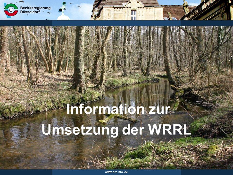 www.brd.nrw.de 12Seite 20.01.2011 WRRL-Abwasser Programm Lebendige Gewässer HY_OW_P63 Erarbeitung von Umsetzungsfahrpläne Erarbeitung von Umsetzungsfahrplänen zum Programm Lebendige Gewässer bis Mitte 2012 neue Programmmaßnahme: