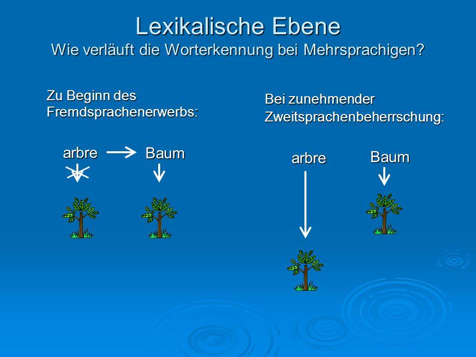 Lexikalische Ebene Sind mehrere Sprachen sprachspezifisch oder gemeinsam repräsentiert.