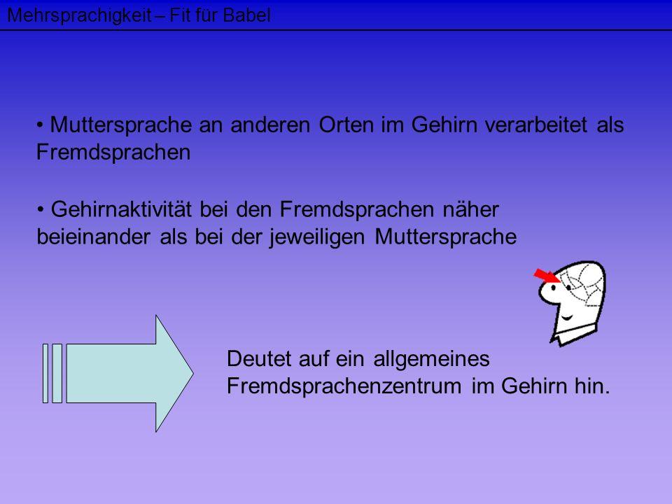 Mehrsprachigkeit – Fit für Babel Muttersprache an anderen Orten im Gehirn verarbeitet als Fremdsprachen Gehirnaktivität bei den Fremdsprachen näher be