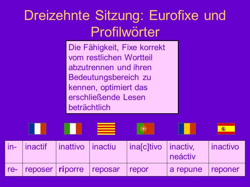 Dreizehnte Sitzung: Eurofixe und Profilwörter Die Fähigkeit, Fixe korrekt vom restlichen Wortteil abzutrennen und ihren Bedeutungsbereich zu kennen, o