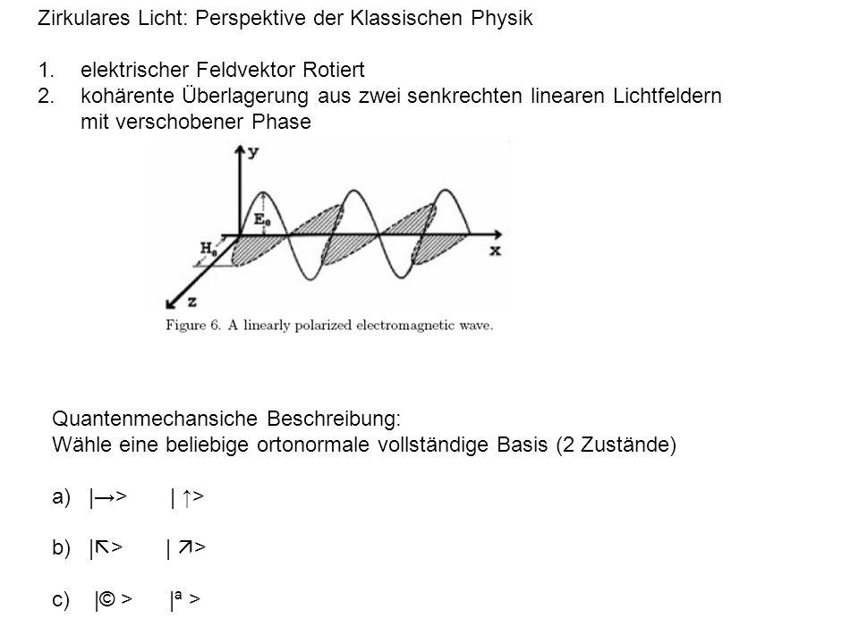 Zirkulares Licht: Perspektive der Klassischen Physik 1.elektrischer Feldvektor Rotiert 2.kohärente Überlagerung aus zwei senkrechten linearen Lichtfeldern mit verschobener Phase Quantenmechansiche Beschreibung: Wähle eine beliebige ortonormale vollständige Basis (2 Zustände) a) |> | > b) | > | > c) |© > |ª >