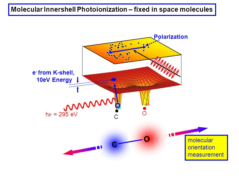 Molecular Innershell Photoionization – fixed in space molecules C O C O h = 295 eV e - from K-shell, 10eV Energy molecular orientation measurement Pol