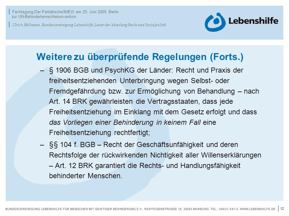 12 | | Fachtagung Der Paritätische/IMEW am 25. Juni 2009, Berlin zur UN-Behindertenrechtskonvention | Ulrich Hellmann, Bundesvereinigung Lebenshilfe,