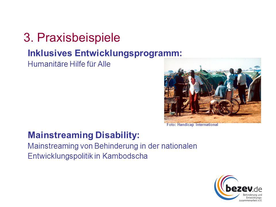 3. Praxisbeispiele Inklusives Entwicklungsprogramm: Humanitäre Hilfe für Alle Foto: Handicap International Mainstreaming Disability: Mainstreaming von