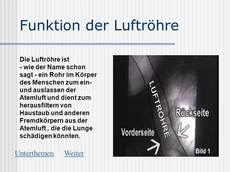 Funktion der Luftröhre Die Luftröhre ist - wie der Name schon sagt - ein Rohr im Körper des Menschen zum ein- und auslassen der Atemluft und dient zum