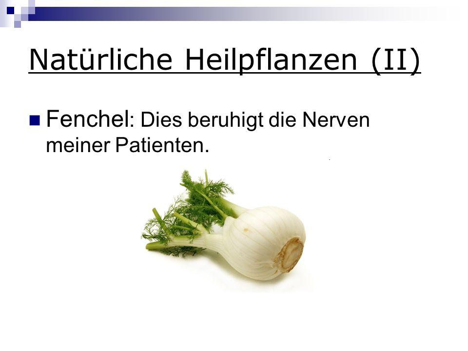 Natürliche Heilpflanzen (II) Fenchel : Dies beruhigt die Nerven meiner Patienten.