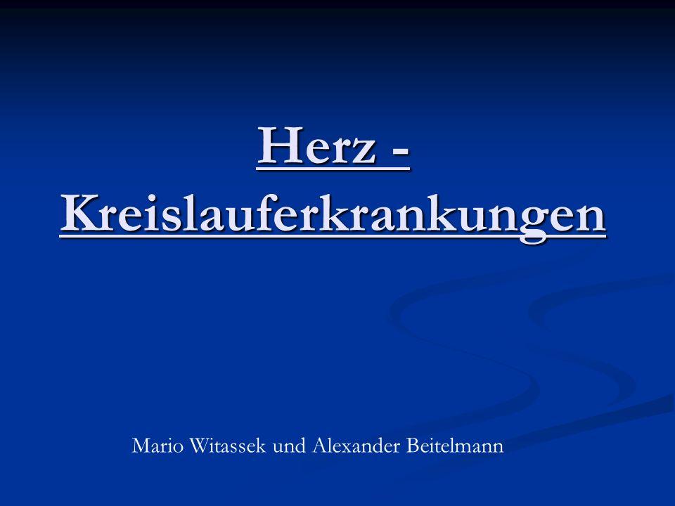 Herz - Kreislauferkrankungen Mario Witassek und Alexander Beitelmann