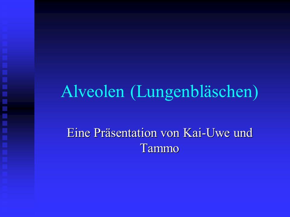 Alveolen (Lungenbläschen) Eine Präsentation von Kai-Uwe und Tammo