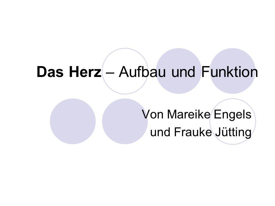 Das Herz – Aufbau und Funktion Von Mareike Engels und Frauke Jütting