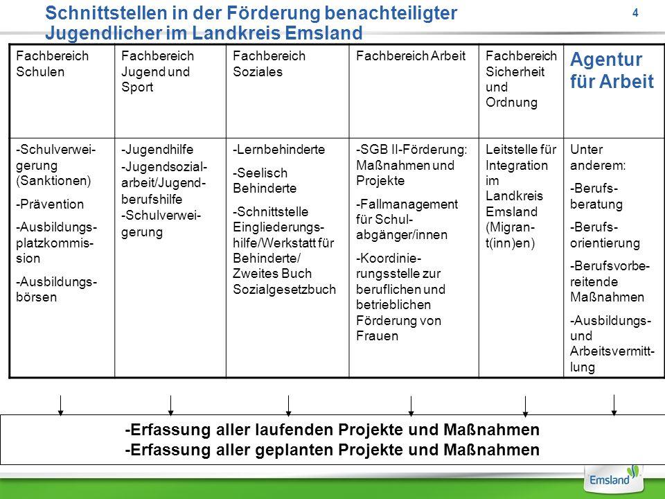 Schnittstellen in der Förderung benachteiligter Jugendlicher im Landkreis Emsland Fachbereich Schulen Fachbereich Jugend und Sport Fachbereich Soziale