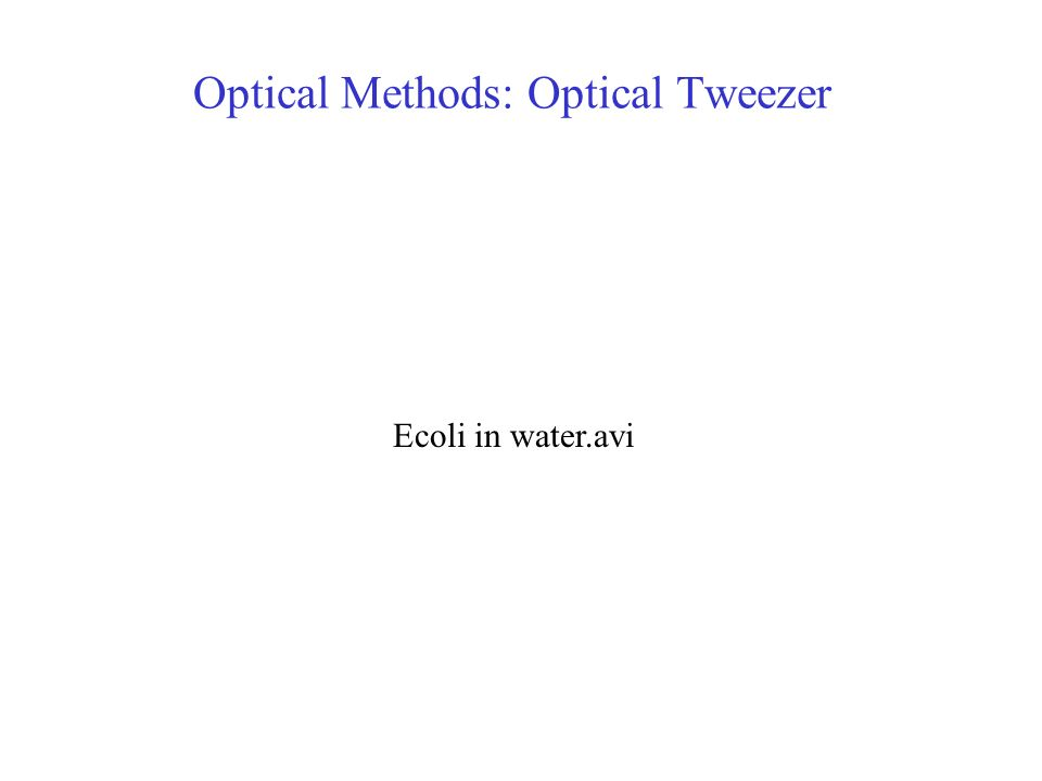 Optical Methods: Optical Tweezer Ecoli in water.avi