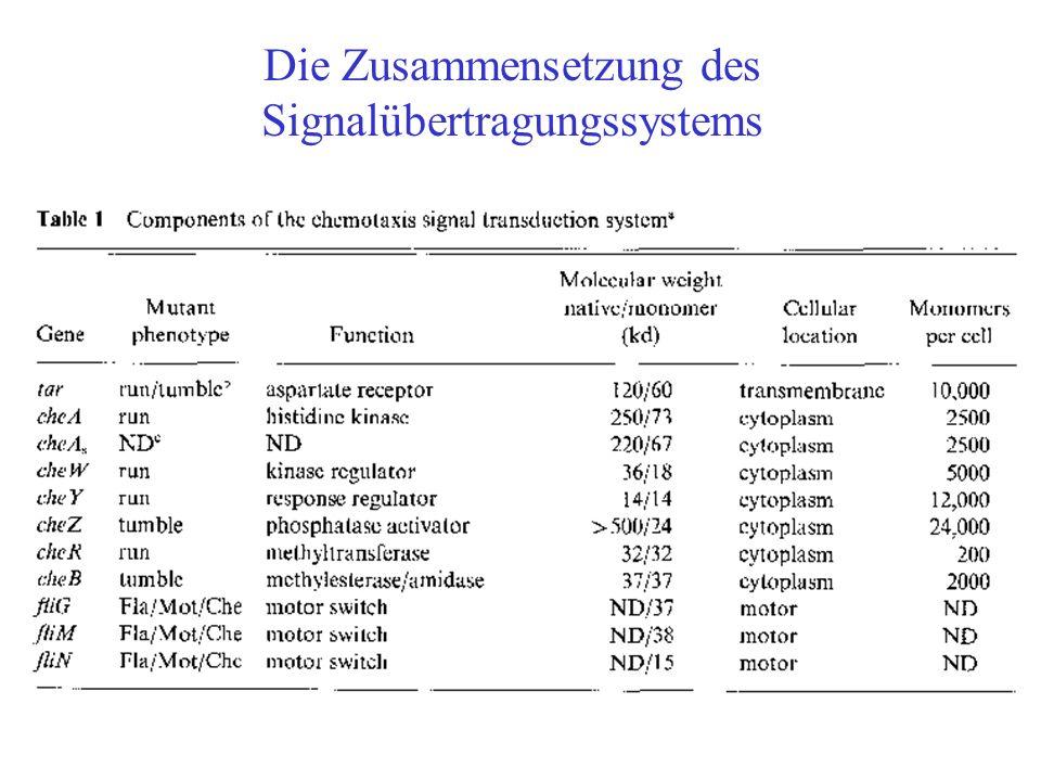 Die Zusammensetzung des Signalübertragungssystems