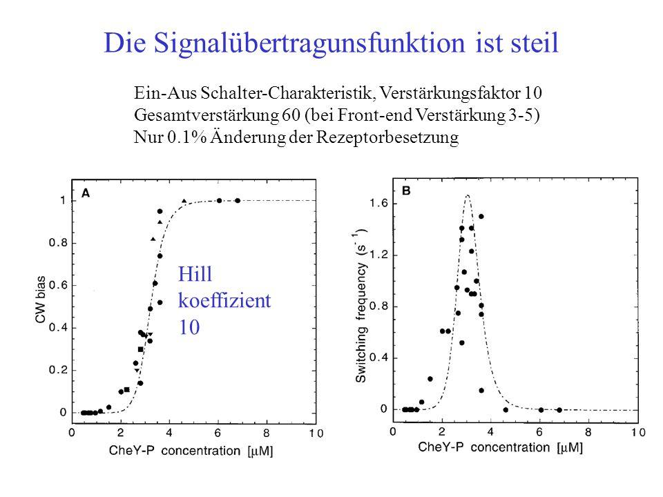 Die Signalübertragunsfunktion ist steil Hill koeffizient 10 Ein-Aus Schalter-Charakteristik, Verstärkungsfaktor 10 Gesamtverstärkung 60 (bei Front-end