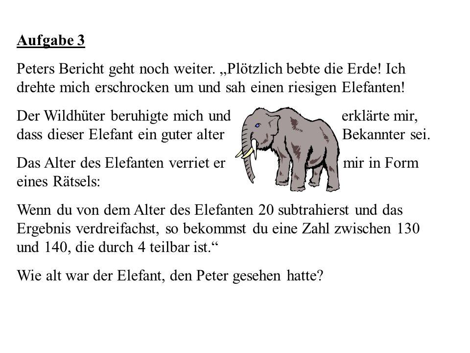 Aufgabe 3 Peters Bericht geht noch weiter. Plötzlich bebte die Erde! Ich drehte mich erschrocken um und sah einen riesigen Elefanten! Der Wildhüter be