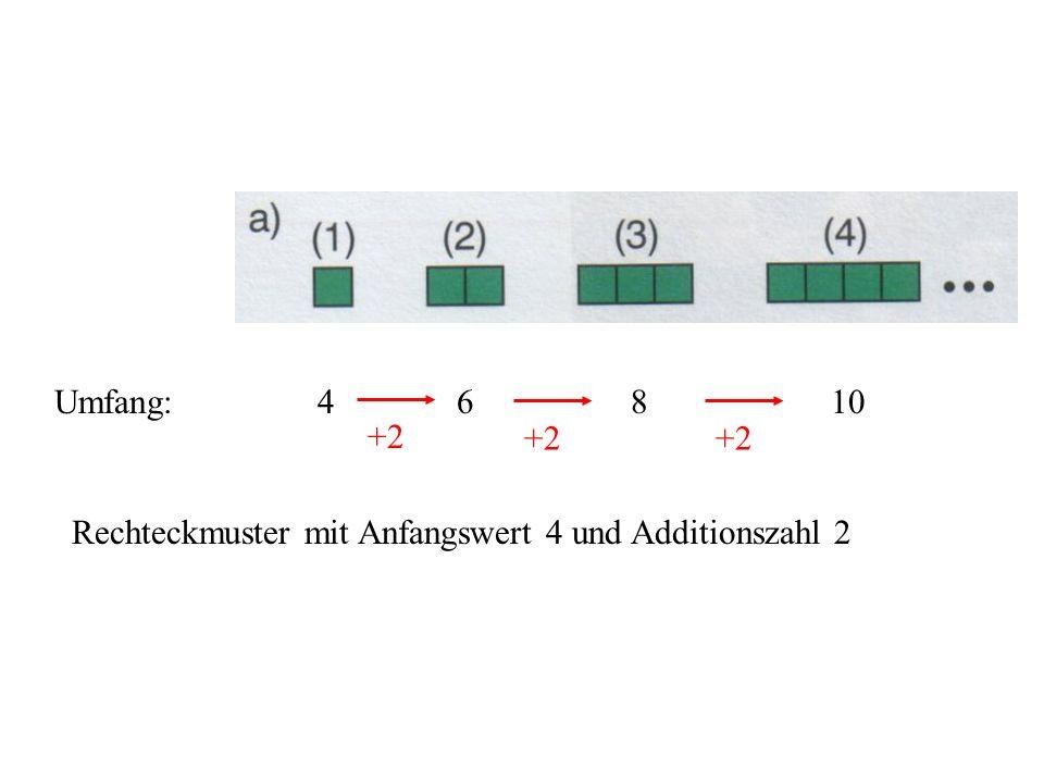 Umfang: 4 6 8 10 +2 Rechteckmuster mit Anfangswert 4 und Additionszahl 2