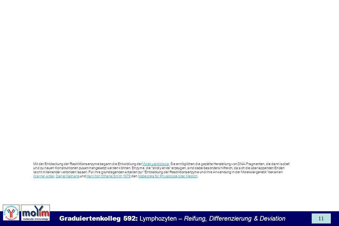 Graduiertenkolleg 592: Lymphozyten – Reifung, Differenzierung & Deviation 11 Mit der Entdeckung der Restriktionsenzyme begann die Entwicklung der Mole
