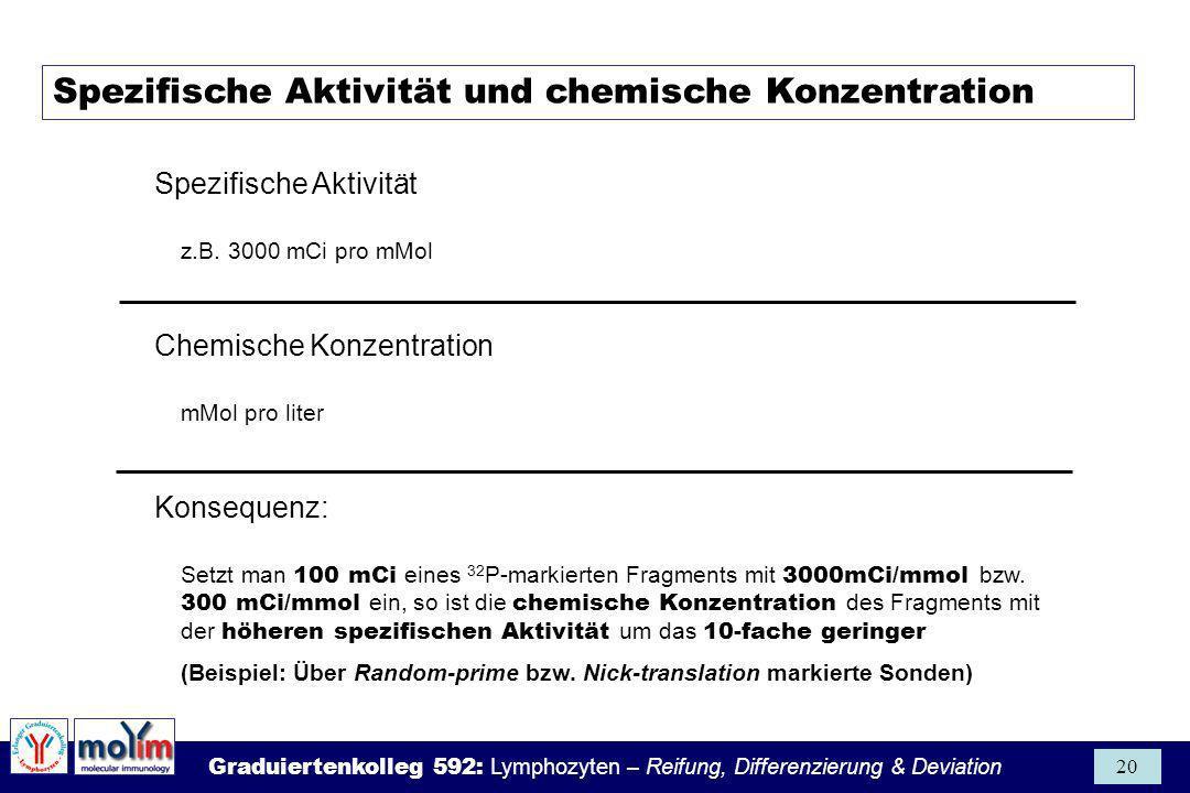 Graduiertenkolleg 592: Lymphozyten – Reifung, Differenzierung & Deviation 20 Spezifische Aktivität und chemische Konzentration Spezifische Aktivität z