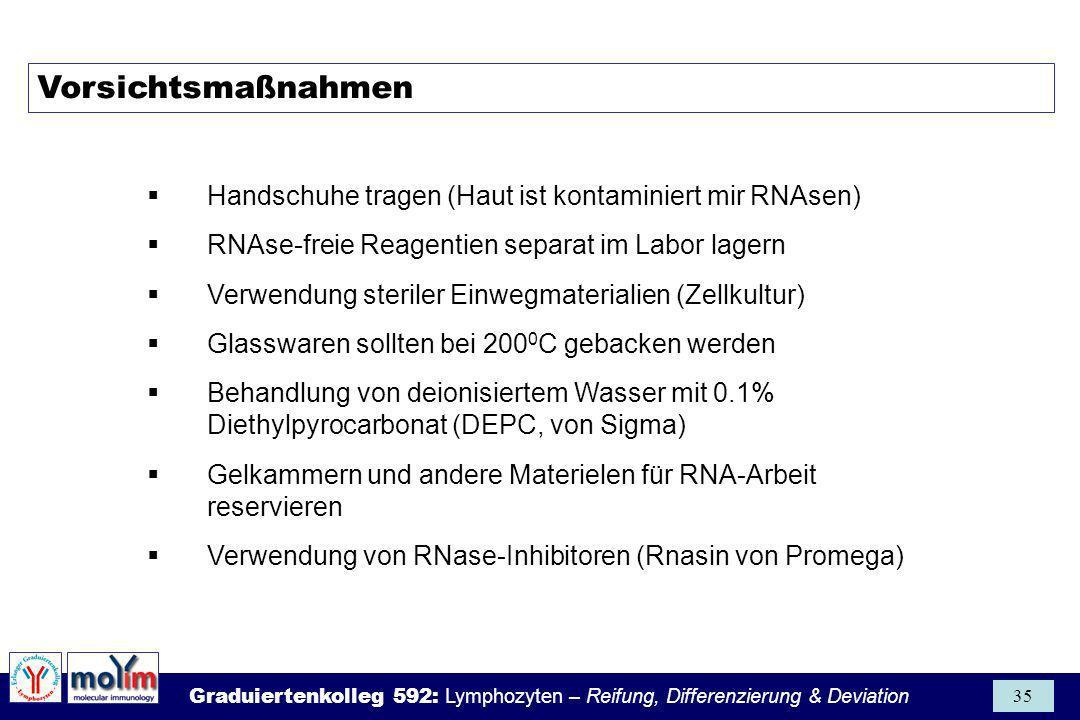 Graduiertenkolleg 592: Lymphozyten – Reifung, Differenzierung & Deviation 35 Vorsichtsmaßnahmen Handschuhe tragen (Haut ist kontaminiert mir RNAsen) R