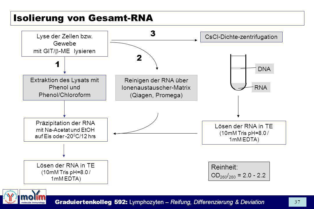 Graduiertenkolleg 592: Lymphozyten – Reifung, Differenzierung & Deviation 37 Isolierung von Gesamt-RNA Lyse der Zellen bzw. Gewebe mit GIT/ -ME lysier