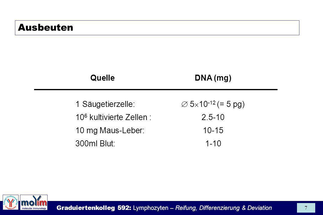 Graduiertenkolleg 592: Lymphozyten – Reifung, Differenzierung & Deviation 8 µg/ml Nukleinsäure = OD 260 x Umrechnungsfaktor Umrechnungsfaktoren (für Küvette mit d = 1cm): ds-DNA:1 OD 260 Unit = 50µg/ml ssDNA:1 OD 260 Unit = 35µg/ml ssRNA:1 OD 260 Unit = 40µg/ml ss Oligonukleotide: 1 OD 260 Unit = 20µg/ml Quantifizierung und Reinheit isolierter Nukleinsäuren Gute DNA: OD 260 / OD 280 = 1.7 - 1.9 Gute RNA: OD 260 / OD 280 = 2.0 - 2.2.
