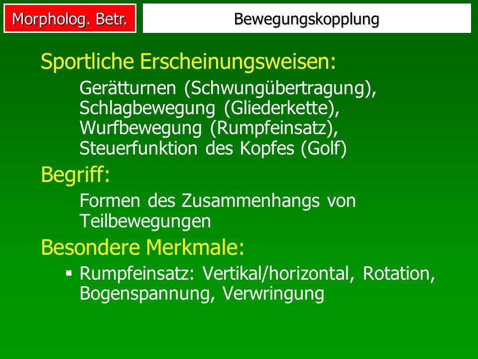 Morpholog. Betr. Bewegungskopplung Sportliche Erscheinungsweisen: Gerätturnen (Schwungübertragung), Schlagbewegung (Gliederkette), Wurfbewegung (Rumpf