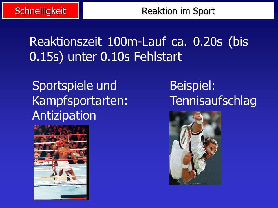 Schnelligkeit Sportler ReizReaktion Modell Reaktionsschnelligkeit Rezep- toren ZNSEffek- toren