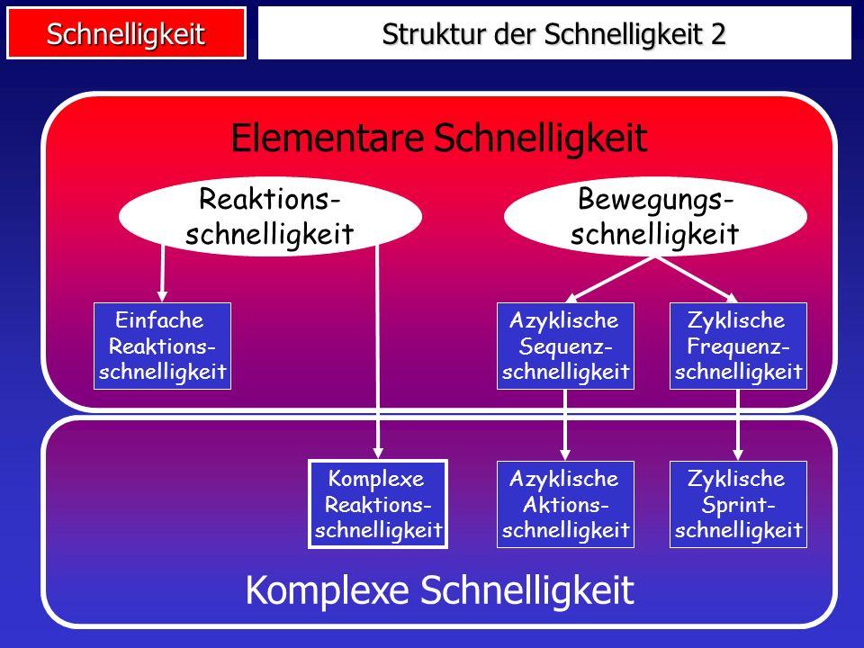 Schnelligkeit Komplexe Schnelligkeit Elementare Schnelligkeit Struktur der Schnelligkeit 2 Reaktions- schnelligkeit Bewegungs- schnelligkeit Azyklische Sequenz- schnelligkeit Azyklische Aktions- schnelligkeit Zyklische Frequenz- schnelligkeit Zyklische Sprint- schnelligkeit Einfache Reaktions- schnelligkeit Komplexe Reaktions- schnelligkeit