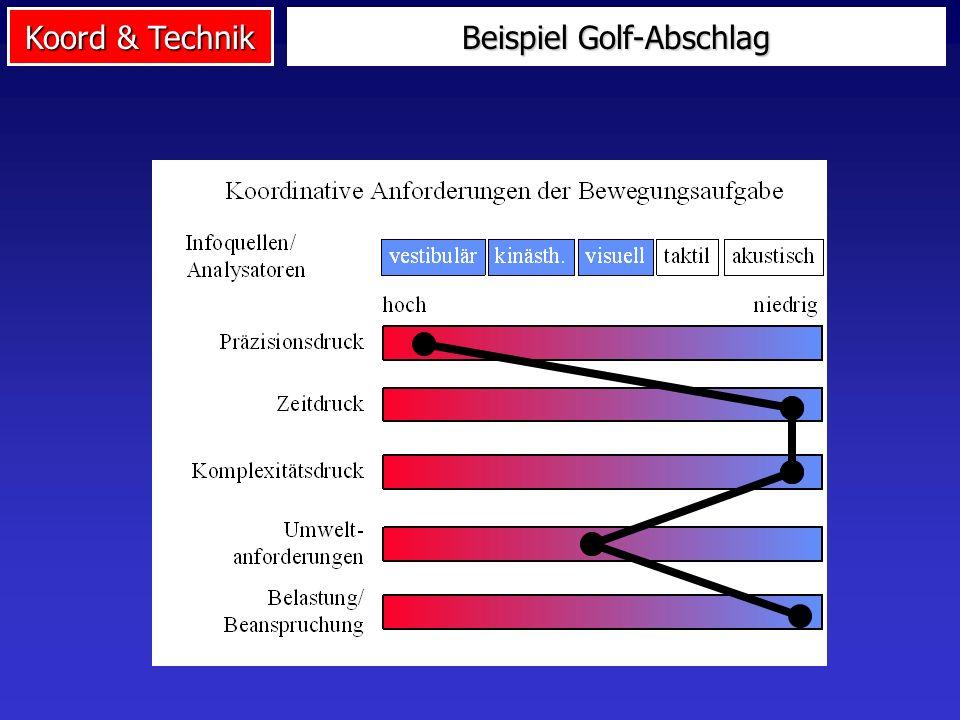 Koord & Technik Ansatz von Neumaier & Mechling
