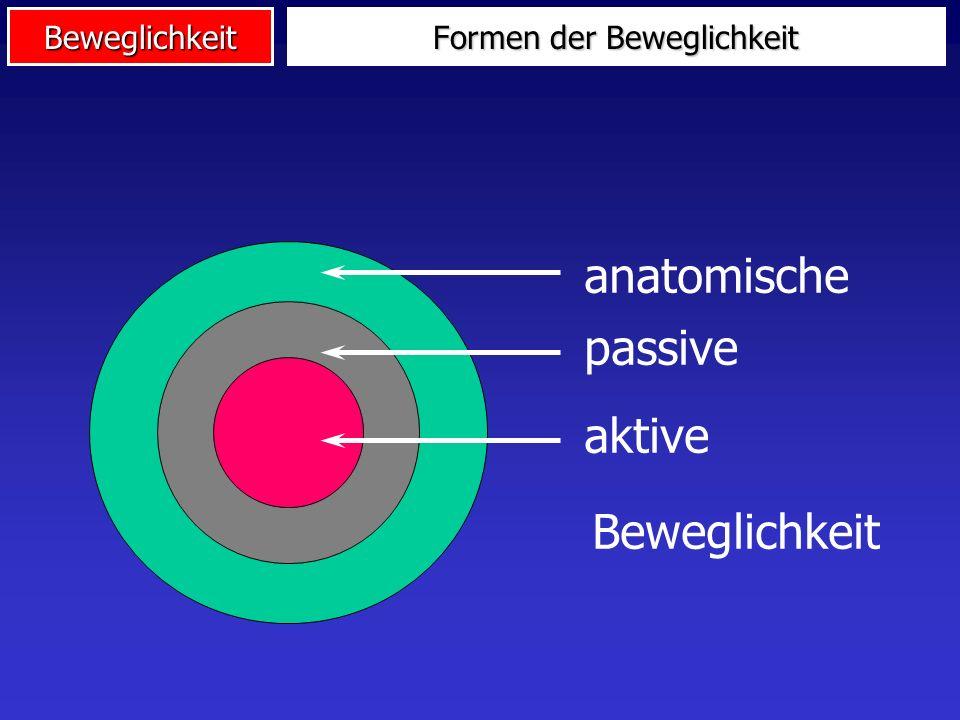 Beweglichkeit Verortung der Beweglichkeit AusdauerKraft Schnellig- keit Beweg- lichkeit Koord. Fähigk. i.e.S. Energetische Fähigkeiten Informationelle
