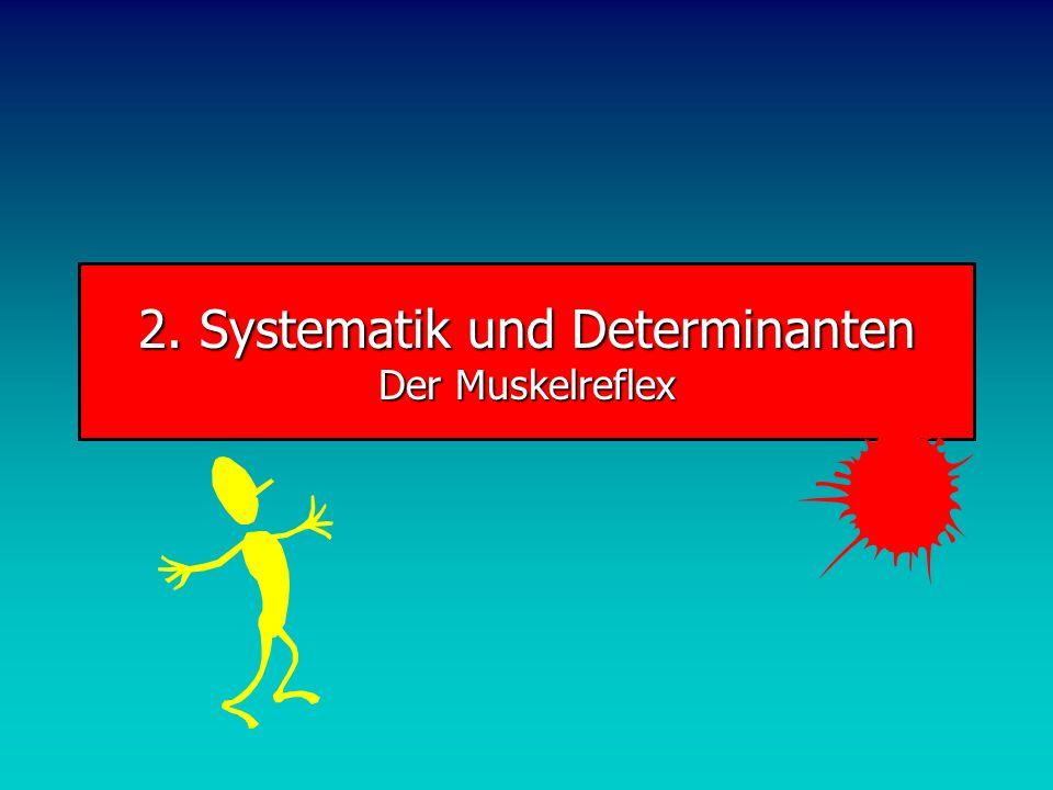 Beweglichkeit Eigenschaften Gelenkflächen Sehnen, Bänder Muskeln Struktur der Beweglichkeit BEWEGLICHKEIT Endogene Faktoren Exogene Faktoren Fähigkeit