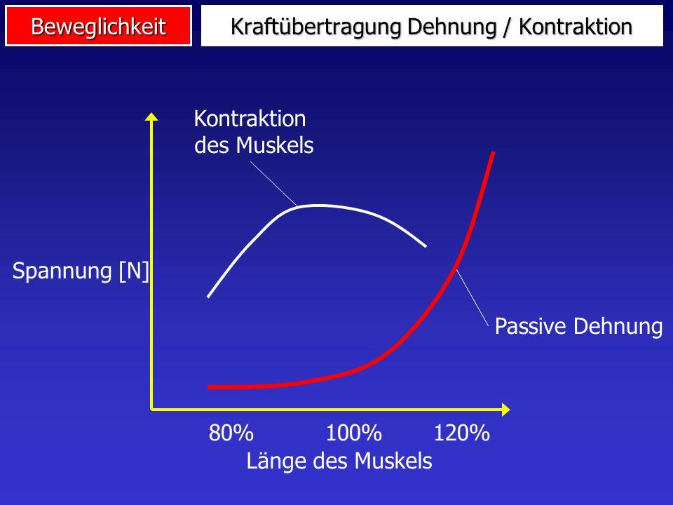 BeweglichkeitMotivation Intensives statisches Dehnen (Stretching) in der Aufwärmphase bewirkt genau das Gegenteil von dem, was man sich erhofft: statt Leistungssteigerung und Verletzungsprophylaxe eher Leistungsminderung und größeres Verletzungsrisiko (Wiemann & Klee, 2000, S.