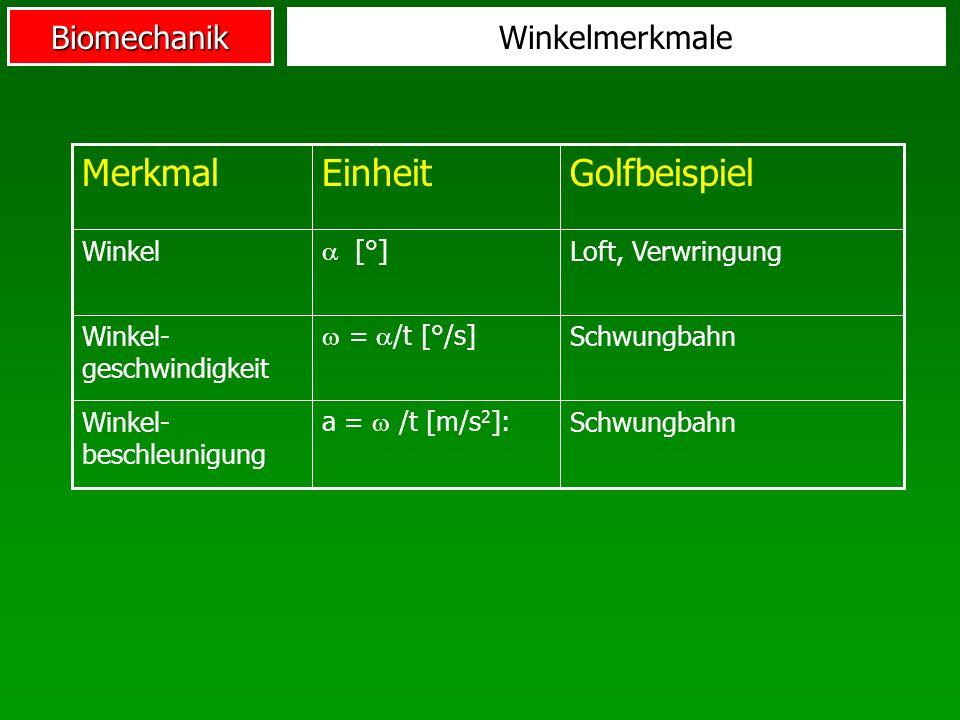 BiomechanikWinkelmerkmale Schwungbahn a = /t [m/s 2 ]: Winkel- beschleunigung Schwungbahn = /t [°/s] Winkel- geschwindigkeit Loft, Verwringung [°] Win